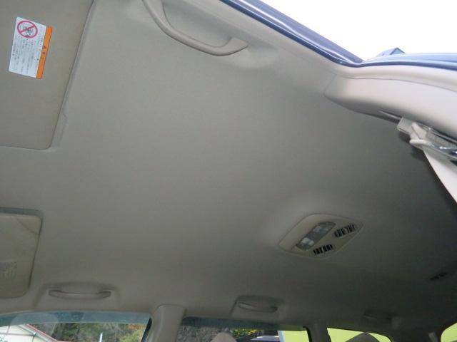 天井にも目立つシミや汚れもなくキレイです。