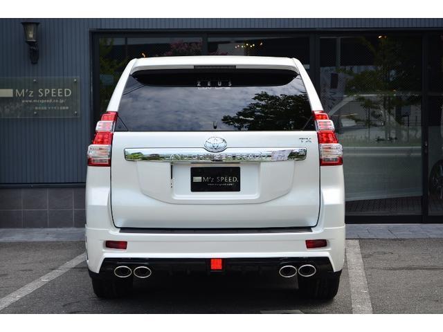 TX ZEUS新車コンプリートカーダウンサスVer(5枚目)