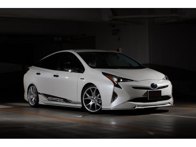 トヨタ S 新車エスプリコンプリートカー エアロ ホイールローダウン
