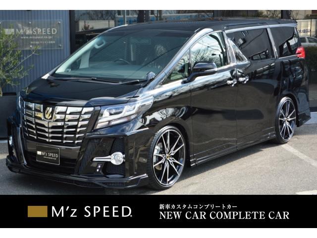 トヨタ 2.5S-A ZEUS新車カスタムコンプリート ローダウン