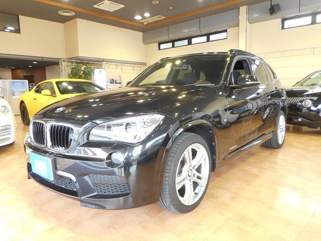 BMW xDrive 20i Mスポーツ 純ナビ Bモニタ 地デジ