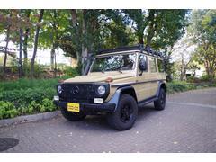 M・ベンツG300プロフェッショナル世界限定約200台