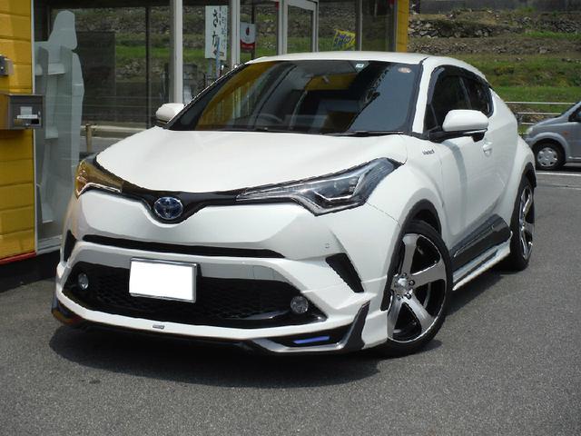 トヨタ G モデリスタ 19AW