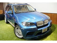 BMW X5 Mインディビジュアル アルピナエアロ21AW パノラマルーフ