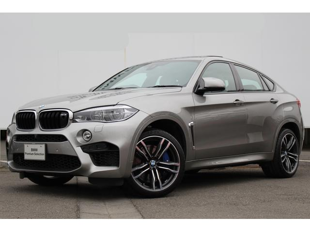 BMW X6 M ベースグレード リヤエンター B&Gサウンド 2...