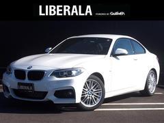 �Q�V���[�Y(BMW) �Q�Q�O���N�[�y �l�X�|�[�c ���Îԉ摜