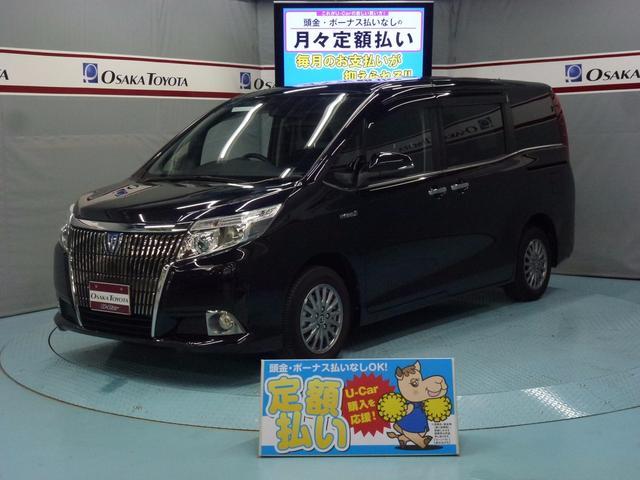 トヨタ ハイブリッドXi SDナビ LED 2年保証