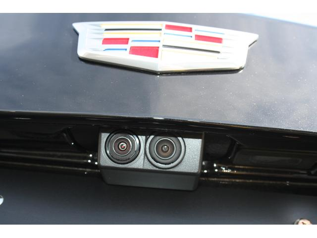 プラチナム 登録済み未使用車 長期メーカー保証付(14枚目)