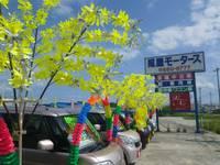 沖縄の中古車販売店なら照屋モータース中古車センター