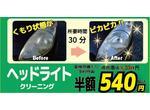 車検見積りキャンペーンライト磨き540円