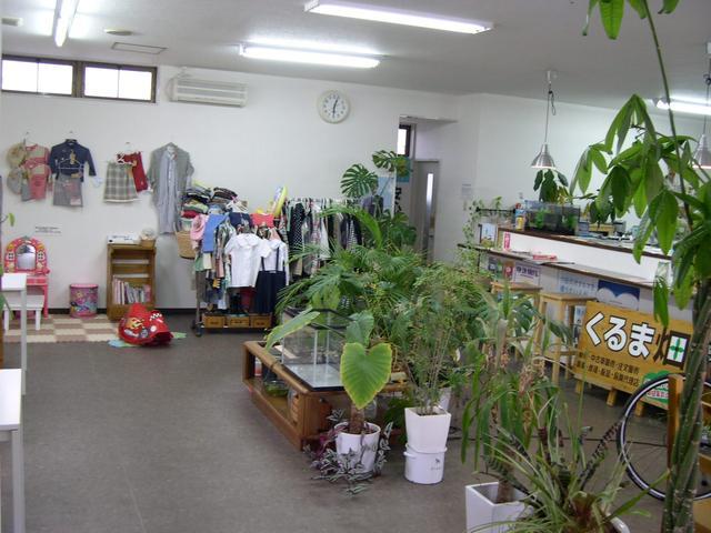 観葉植物とリトルフィッシュの空間は完全禁煙の商談ルームです!! キッズルームもあります。