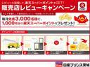 eパワーX エマブレ/踏み間違い/ドラレコ/アラビュー/ナビ(69枚目)