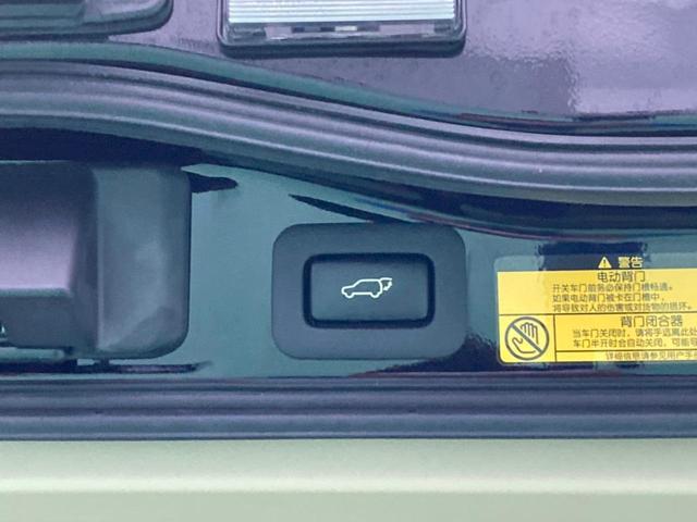 エレクトリックテールゲートも装備♪ゲート閉じるときはボタン一つで便利♪