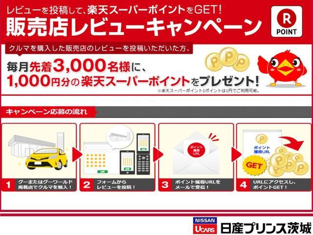 X DIG-S 純正ナビ Bカメラ ETC エマブレ 1オナ(49枚目)