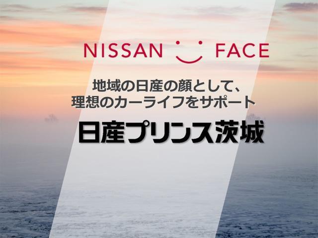 1.6 DX 純正ナビ Bカメラ ドラレコ フォグ(51枚目)