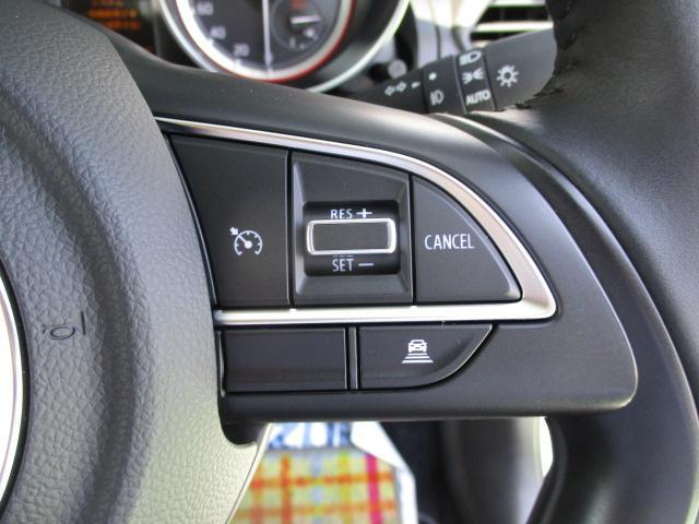 XRリミテッド 全方位モニター用カメラパッケージ装着車(38枚目)