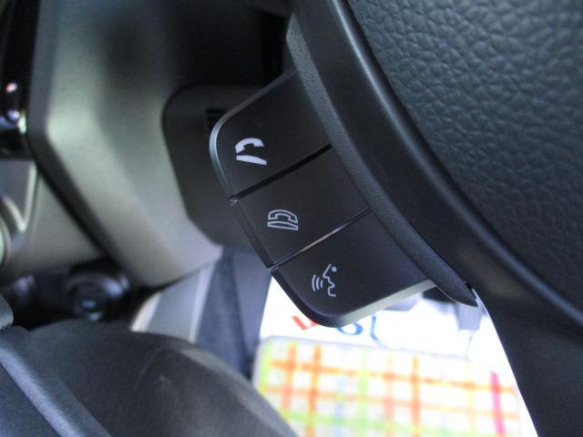 XRリミテッド 全方位モニター用カメラパッケージ装着車(40枚目)