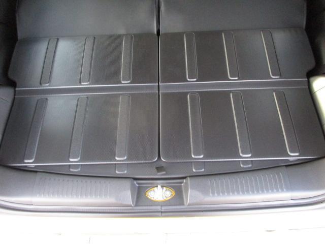 HYBRID X 全方位カメラパッケージ装着車(68枚目)