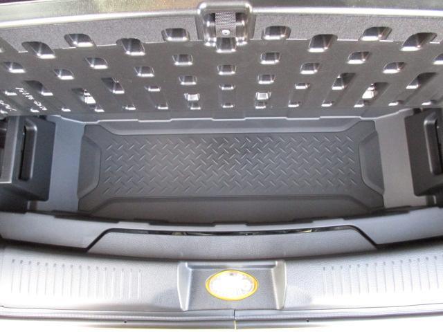 HYBRID X 全方位カメラパッケージ装着車(69枚目)
