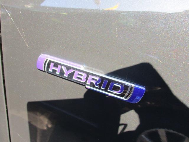 HYBRID FZ(8枚目)