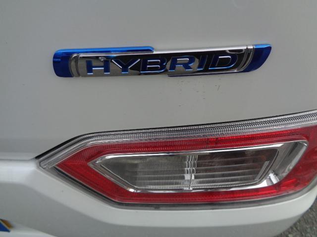 HYBRID FX(7枚目)