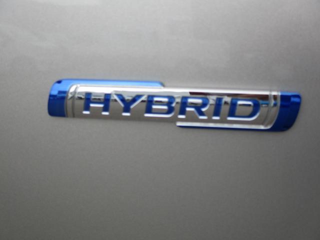 スティングレー HYBRID X 2型(9枚目)