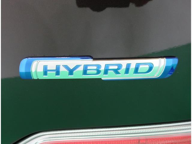 HYBRID FX 2型(33枚目)
