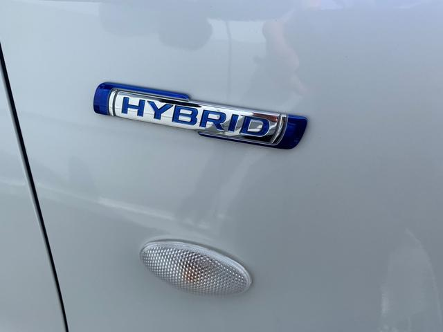 HYBRID FX(38枚目)