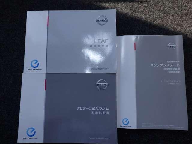 X EV専用ナビ&クルーズコントロール&バックモニター(20枚目)