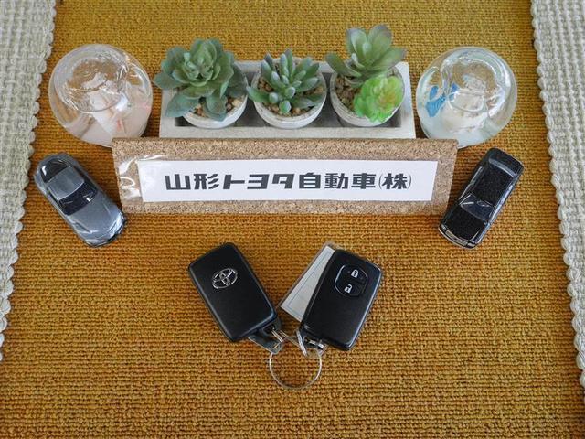 S メモリーナビ フルセグ スマートキー ETC バックモニター ワンオーナー 寒冷地仕様(17枚目)