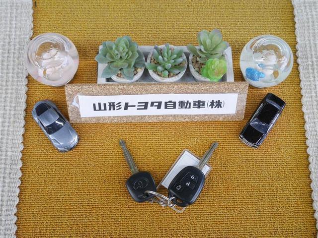ハイブリッドX 片側パワスラ メモリーナビ キーレス バックモニター 3列シート ウォークスルー(17枚目)