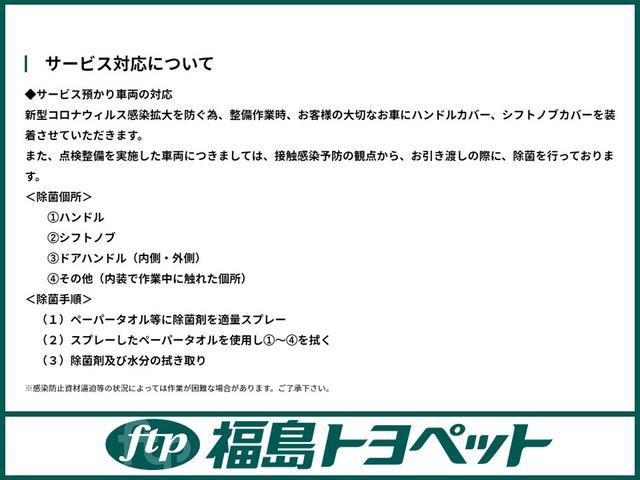 ランドベンチャー 4WD ワンセグ メモリーナビ(43枚目)