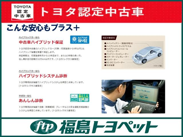 S TCナビ フルセグTV バックモニター ETC 寒冷地仕様車(42枚目)