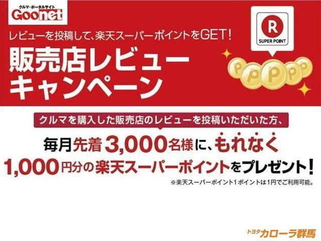 G クルーズコントロール スマートキ- メモリーナビ ABS(43枚目)