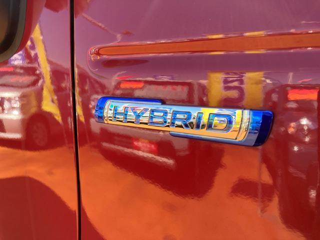 HYBRID G 前後衝突被害軽減ブレーキ/オートライト(9枚目)