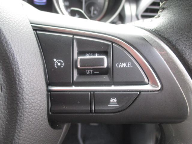 HYBRID RS 全方位モニター付き(20枚目)