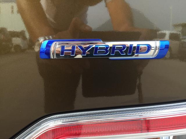 HYBRID FZ(36枚目)