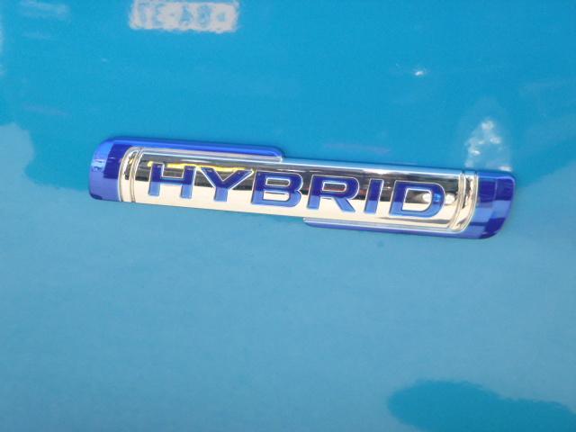 HYBRID FX(25枚目)