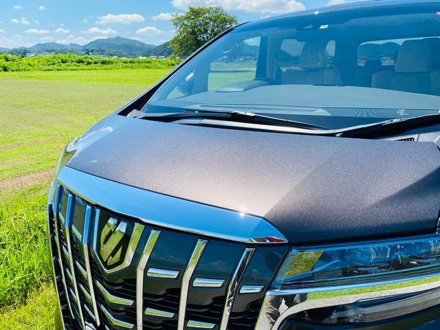 2.5X 福祉車両 サイドリフトアップチルトシート 両側電動スライドドア ツインムーンルーフ スペアタイヤ リヤクロストラフィックオートブレーキ BSM デジタルインナーミラー Bluetooth 未使用(23枚目)
