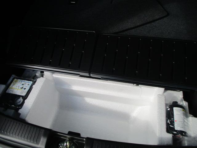 スティングレー HYBRID X 2型(36枚目)