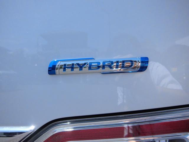 25周年記念車 HYBRID FZリミテッド(29枚目)