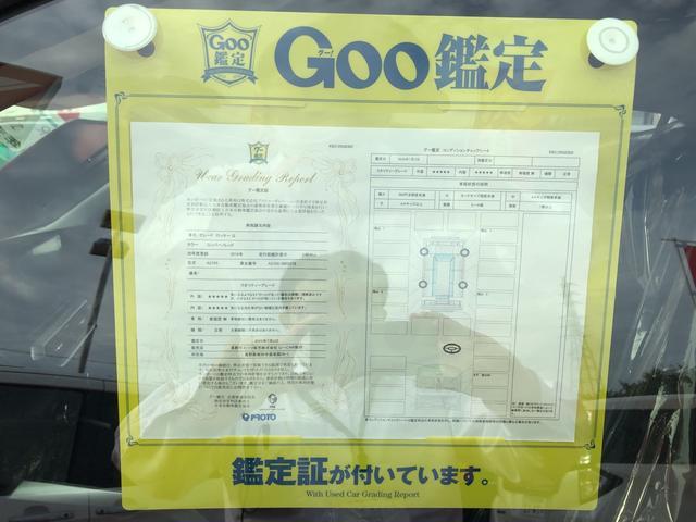 G アダクティブクルーズコントロール(40枚目)