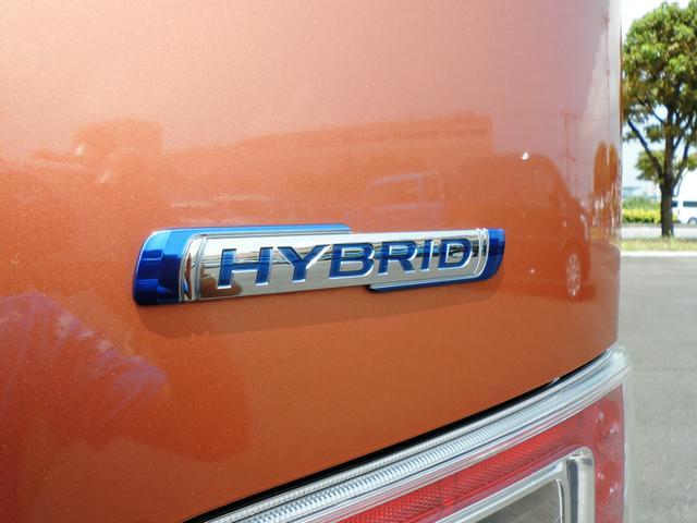 HYBRID FZ(52枚目)