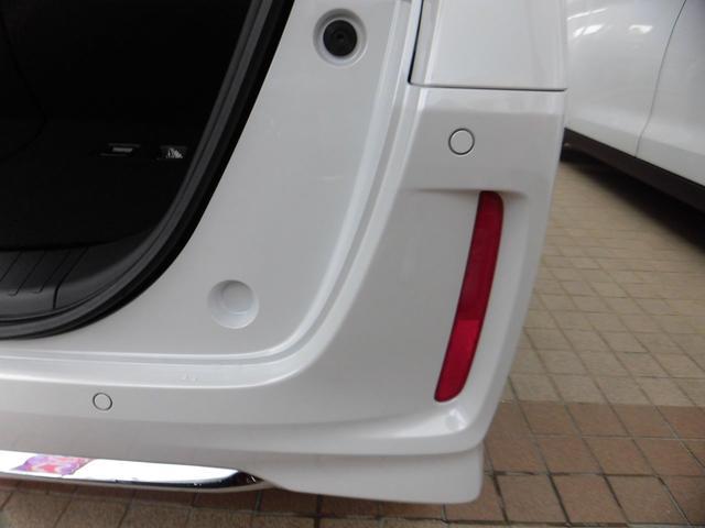 L 新車・デモカー(49枚目)