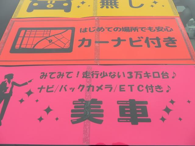 グランドキャビン 10名乗り パワースライドドア ナビTV(36枚目)