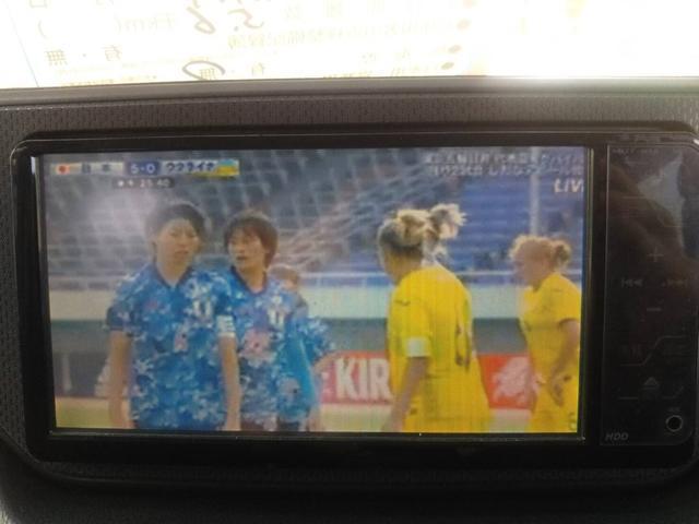 L 新品アルミ シートカバー ナビ バックカメラ ドライブレコーダー フルセグTV(29枚目)