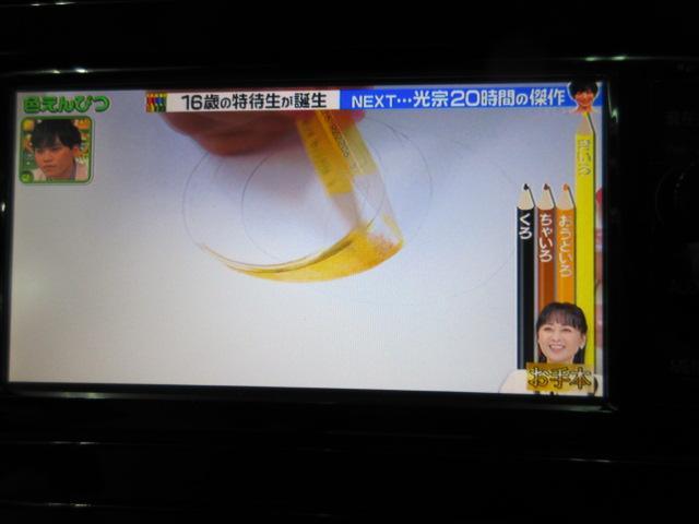 Sツーリングセレクション フルセグTV・ナビ・DVDビデオ・ハンズフリー・クルーズコントロール・ブレーキサポート(11枚目)