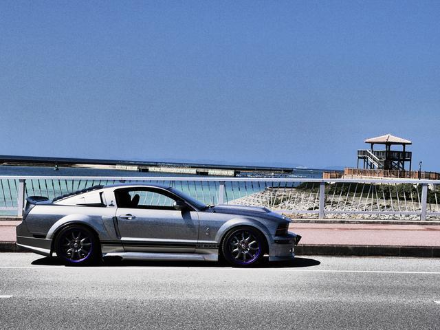 V8 シェルビーGT500E サリーンジャパン物(4枚目)