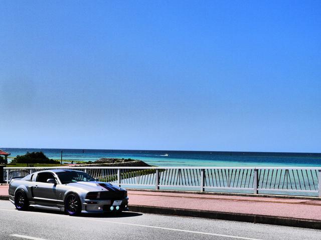 V8 シェルビーGT500E サリーンジャパン物(5枚目)