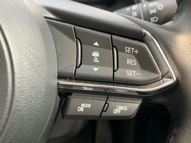 20S プロアクティブ Sパッケージ 衝突被害軽減システム アダプティブクルーズコントロール 全周囲カメラ オートマチックハイビーム 4WD 電動シート シートヒーター バックカメラ オートライト LEDヘッドランプ ETC ワンオーナー(13枚目)